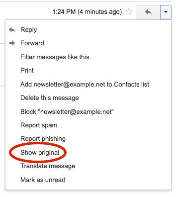 Google Web Mail Interface - Show Original